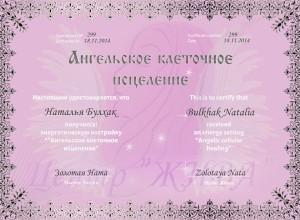 Наталья Булхак Ангельское клеточное исцеление (2)